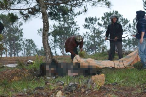 Xác nam thanh niên cháy đen, hai chân bị trói chéo vào cây thông