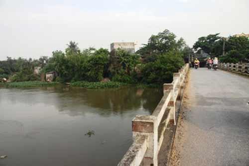 Thực hư tin đồn thả cua Trung Quốc gây vô sinh ra sông
