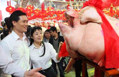 Hình ảnh Lợn đẹp đua tài ở... lò mổ số 5