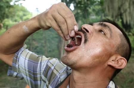 Hình ảnh Những món ăn kỳ quái nhất thế giới số 8