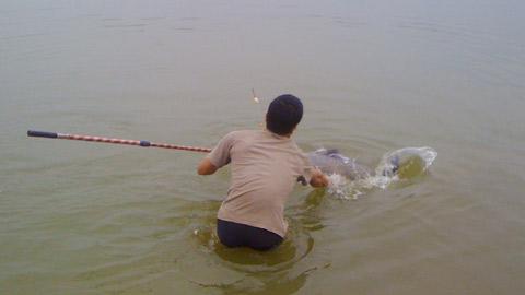 Hình ảnh Xem hành trình câu cá trắm nặng gần 30 cân số 3