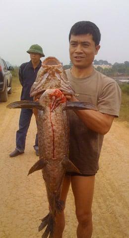 Hình ảnh Xem hành trình câu cá trắm nặng gần 30 cân số 8