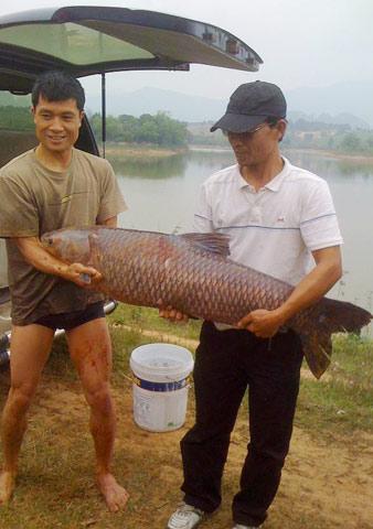 Hình ảnh Xem hành trình câu cá trắm nặng gần 30 cân số 10