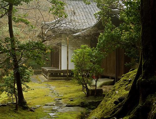 Hình ảnh Những khu vườn xinh đẹp số 10