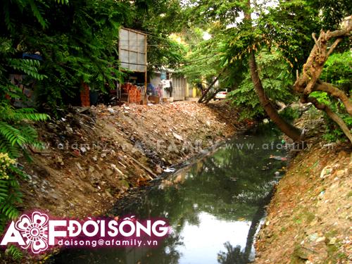 Hình ảnh Thảm cảnh người dân vật vã sống chung cùng mương ô nhiễm số 1
