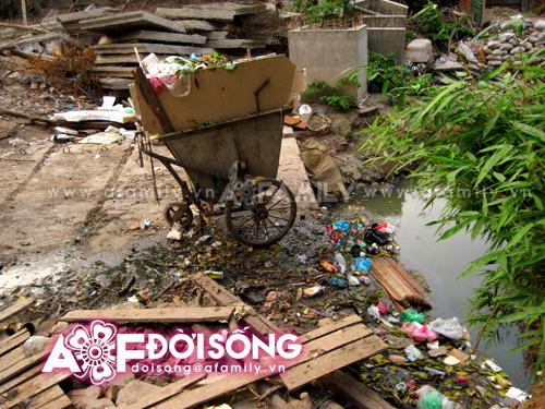 Hình ảnh Thảm cảnh người dân vật vã sống chung cùng mương ô nhiễm số 3