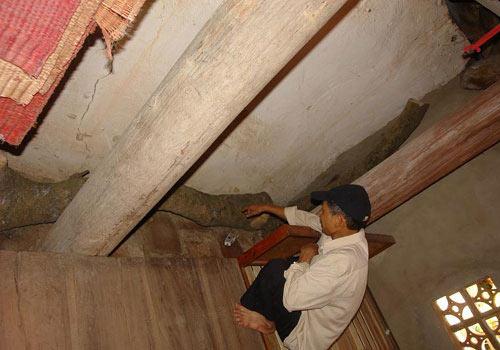 Hình ảnh Cây sưa trị giá chục tỷ đồng ở Bắc Ninh số 9