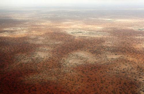 Hình ảnh Hình ảnh xúc động về nạn đói ở Somali số 2