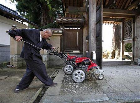 Hình ảnh Nhà sư Nhật trồng hướng dương để khử phóng xạ số 4