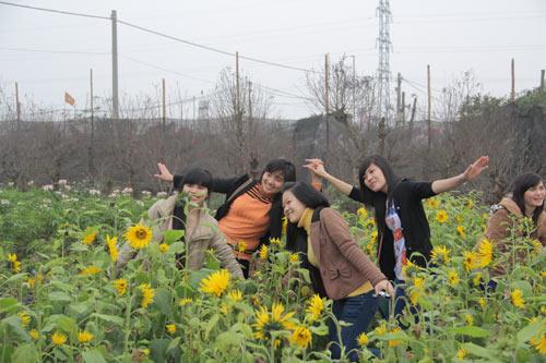 Hình ảnh Vườn hoa Bách Nhật hút khách ngày xuân số 1