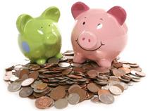 Hình ảnh Nên gửi tiết kiệm trong năm 2013 số 1