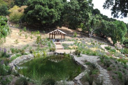 Thả bay tâm hồn trong vườn Nhật tuyệt mỹ - 9