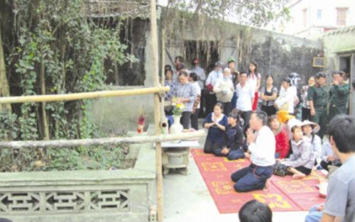 Hình ảnh Tin đồn vợ chồng thần rắn xuất hiện trên cây ở Nam Định số 3
