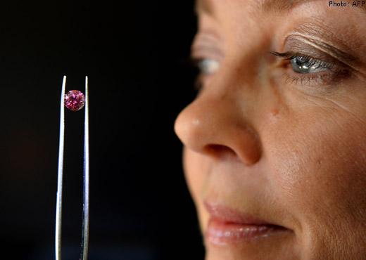 Hình ảnh Đấu giá viên cương đỏ lớn nhất thế giới số 1