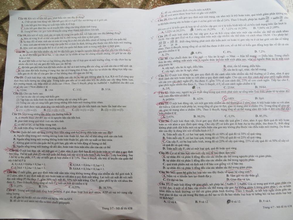 Hình ảnh Đáp án đề thi Đại Học môn Sinh khối B năm 2013 - Đã có đáp án chính thức của Bộ GD & ĐT số 8