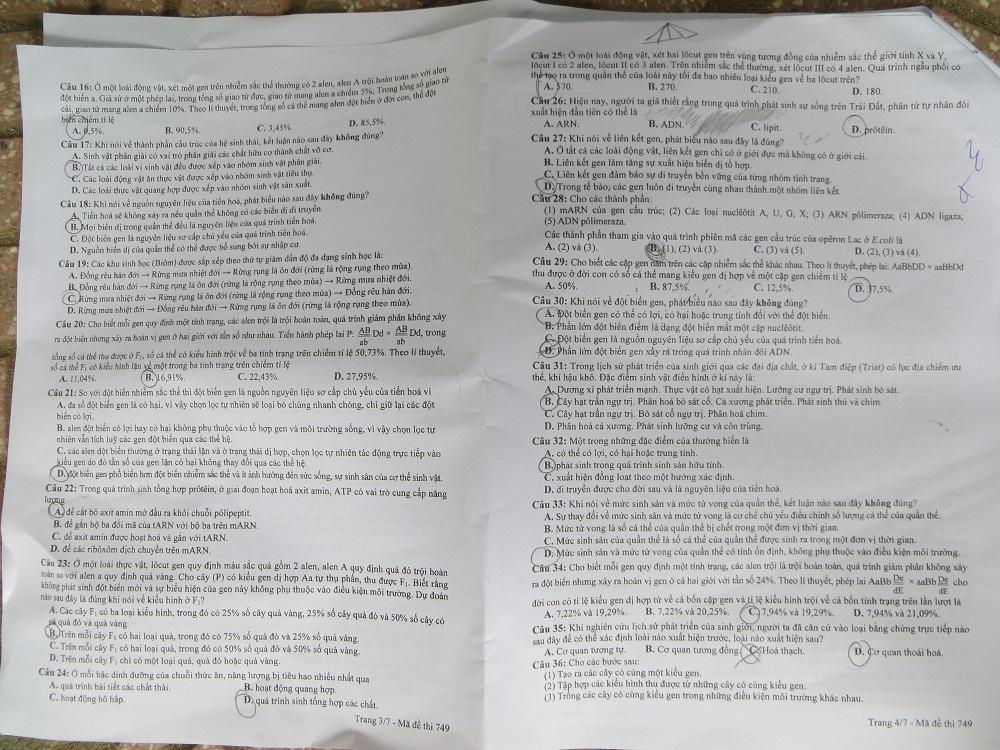 Hình ảnh Đáp án đề thi Đại Học môn Sinh khối B năm 2013 - Đã có đáp án chính thức của Bộ GD & ĐT số 12