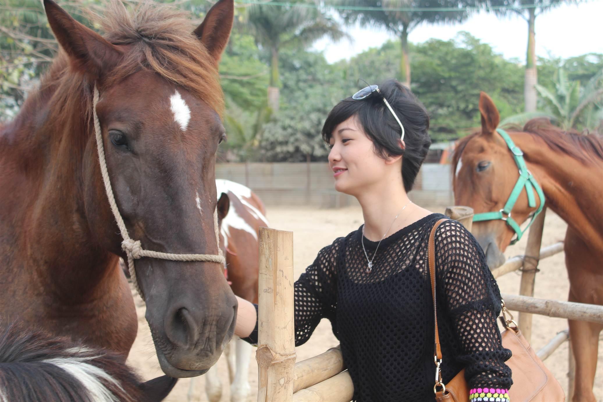 Hình ảnh Đột nhập trang trại ngựa đua tiền tỷ giữa Hà Nội số 3