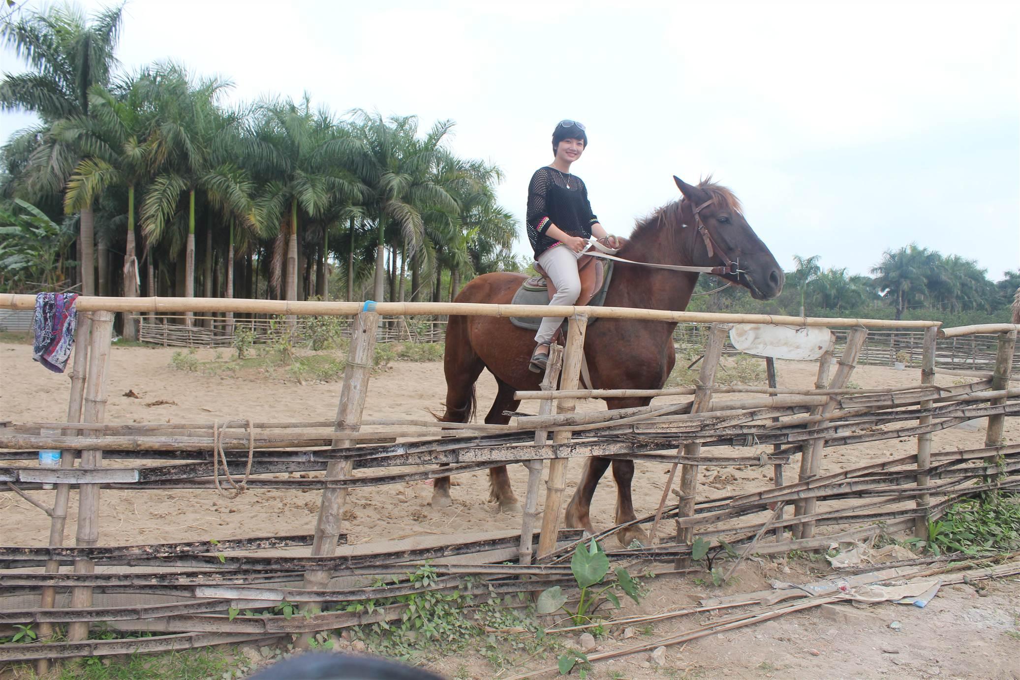 Hình ảnh Đột nhập trang trại ngựa đua tiền tỷ giữa Hà Nội số 16