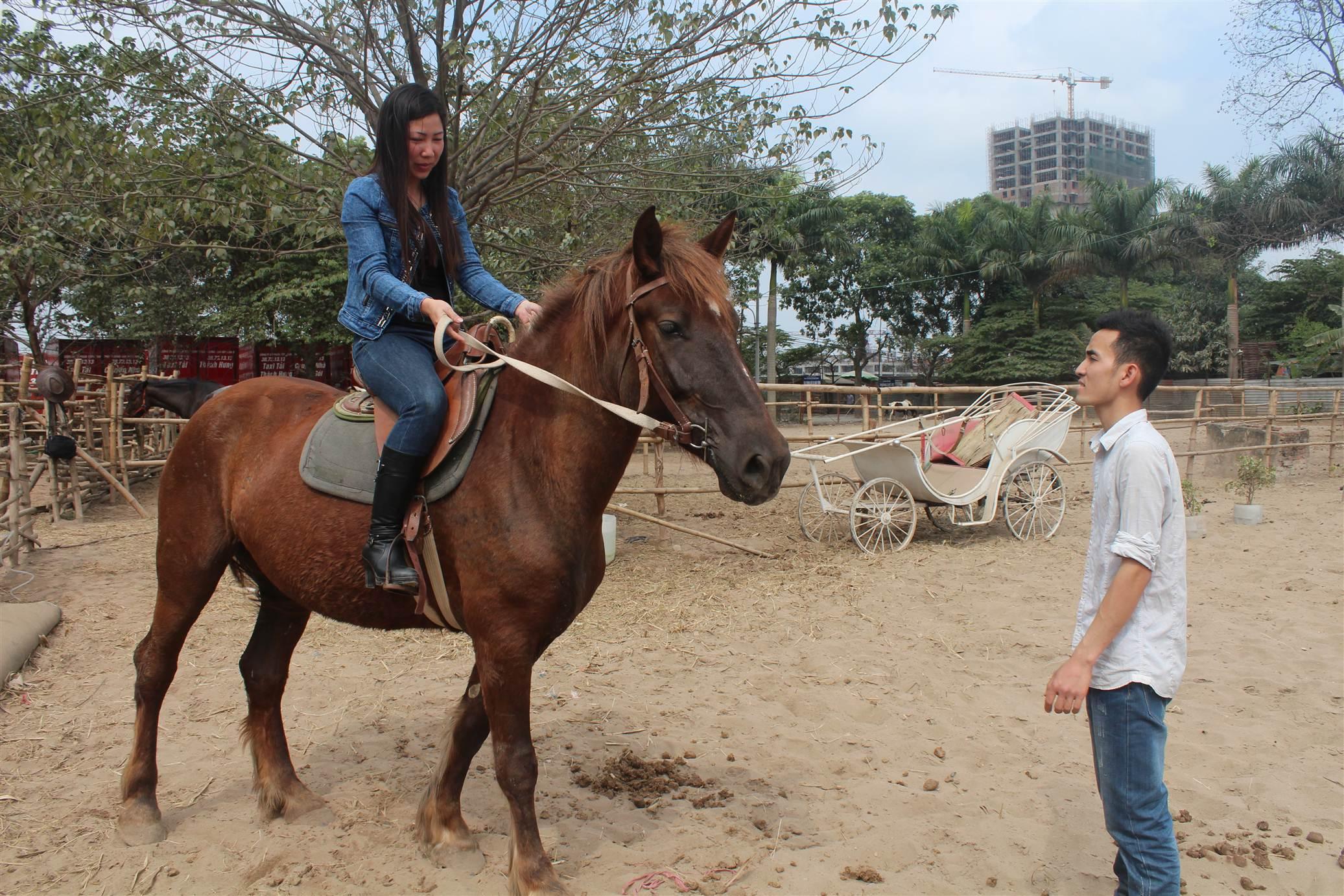 Hình ảnh Đột nhập trang trại ngựa đua tiền tỷ giữa Hà Nội số 14