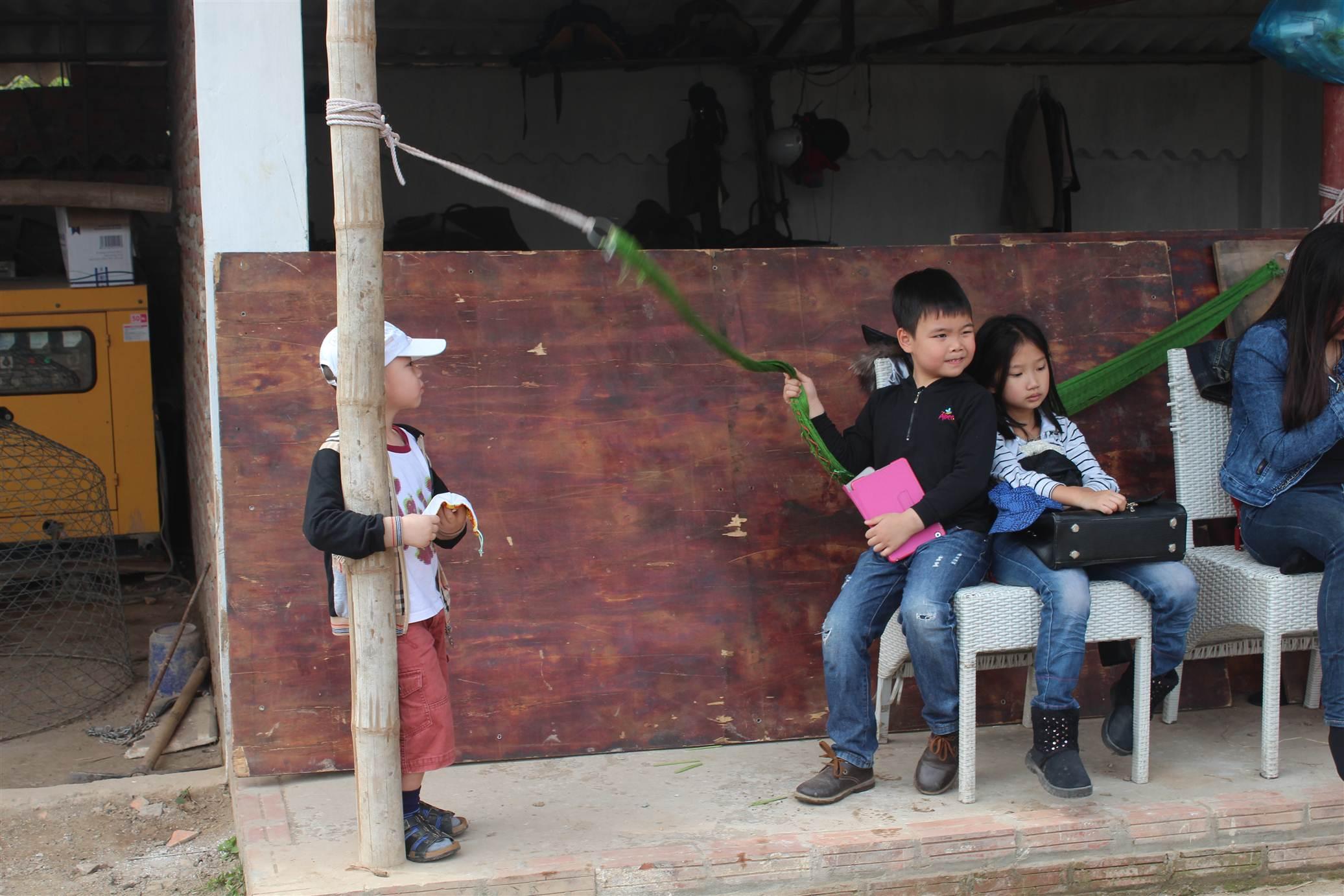 Hình ảnh Đột nhập trang trại ngựa đua tiền tỷ giữa Hà Nội số 9