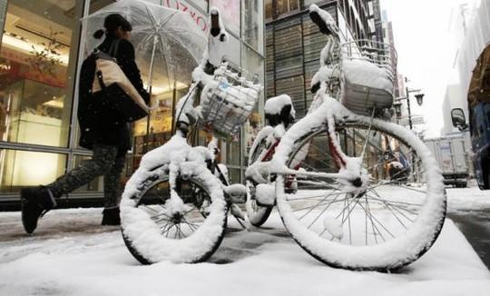 Nhật Bản: Tuyết rơi khủng khiếp nhất 20 năm qua 6