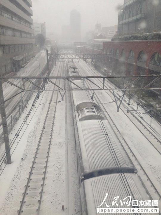 Nhật Bản: Tuyết rơi khủng khiếp nhất 20 năm qua 7