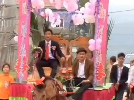 Clip rước dâu bằng xe ngựa gây xôn xao tại Hà Tĩnh 5