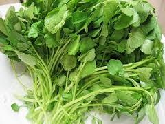 Tác dụng chữa bệnh kỳ diệu của rau cải xoong  3