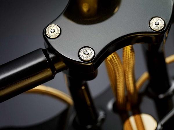Choáng váng motor làm bằng vàng và đá quý giá gần 18 tỷ 12