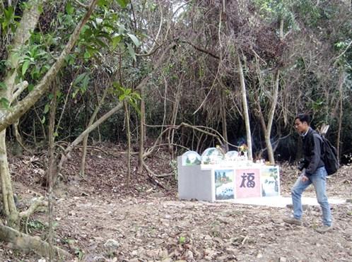 Chuyện lạ về khu rừng hễ ai chặt cây là gặp họa 7