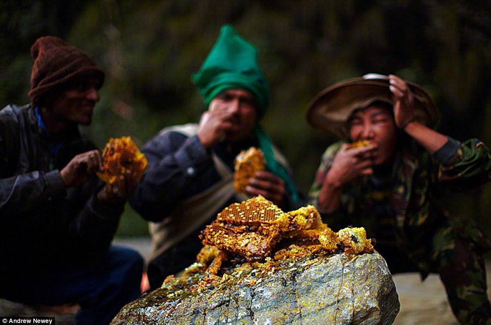 Clip thợ săn ong treo mình lủng lẳng giữa vách núi Himalaya hùng vĩ 3
