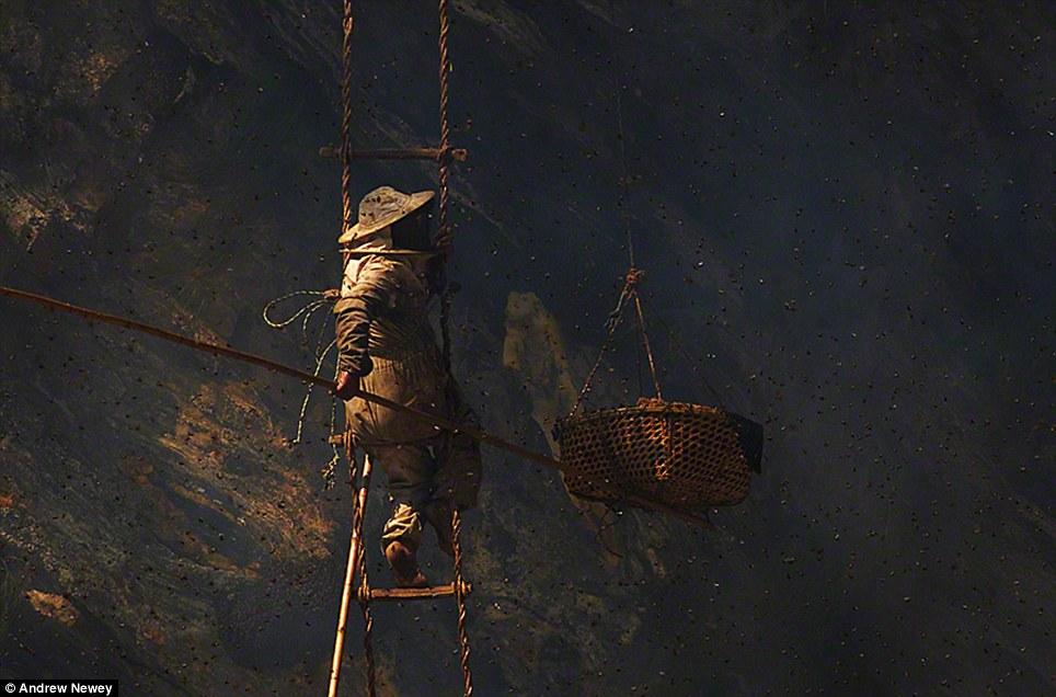 Cận cảnh săn mật ong liều mạng tại chân núi Himalaya 12