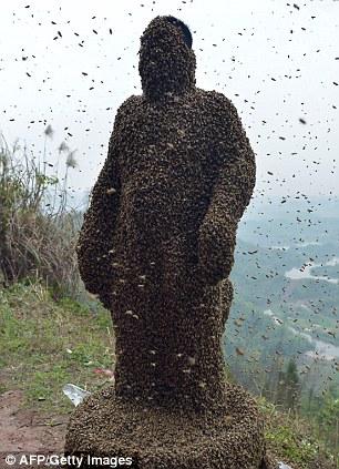 Dị nhân Trung Quốc để 45kg ong bâu kín người 8