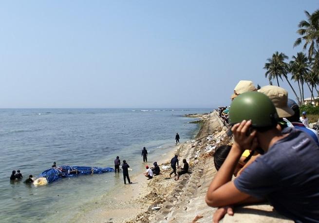 Lai dắt cá voi 5 tấn từ Trường Sa về chôn tại đảo Lý Sơn 4