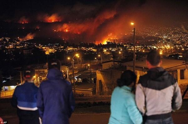 Chile: Cháy rừng khủng khiếp, 1000 ngôi nhà bị 'nuốt gọn' 12