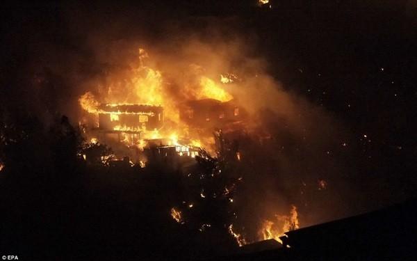 Chile: Cháy rừng khủng khiếp, 1000 ngôi nhà bị 'nuốt gọn' 10