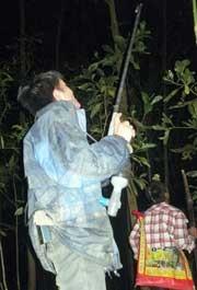 Theo dấu chân thợ săn chim trong đêm tối 5