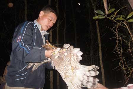 Theo dấu chân thợ săn chim trong đêm tối 6