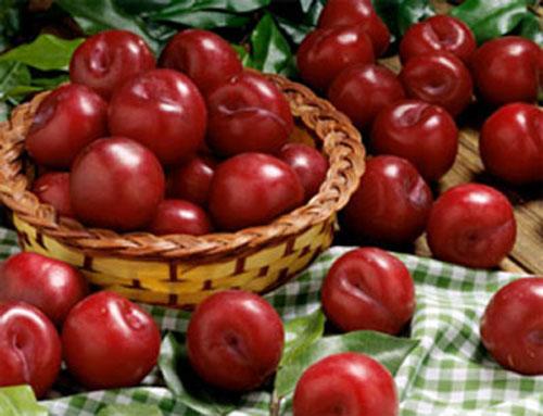 Những loại quả ăn nhiều vào mùa hè dễ chết sớm