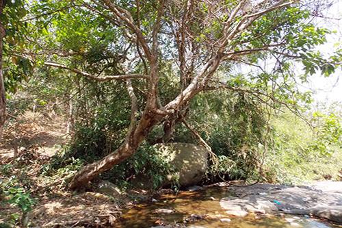 """Bình Thuận có """"công viên nước"""