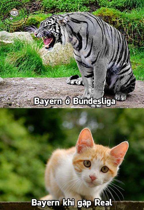 Tiết lộ sốc: Guardiola giả vờ làm HLV Bayern để trả thù cho Barca 16