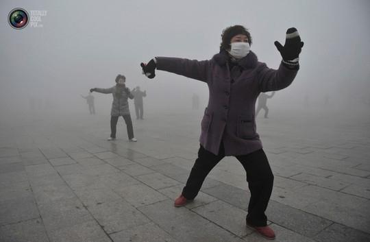 Ly dị vợ vì... ô nhiễm môi trường  4