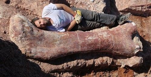 Phát hiện hóa thạch khủng long khổng lồ nặng 77 tấn 4