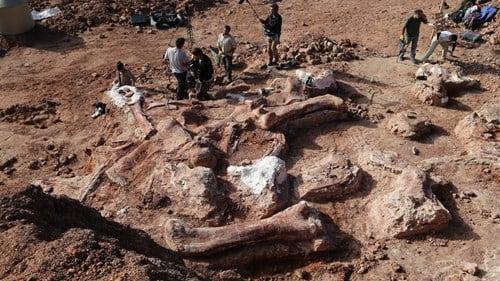 Phát hiện hóa thạch khủng long khổng lồ nặng 77 tấn 6