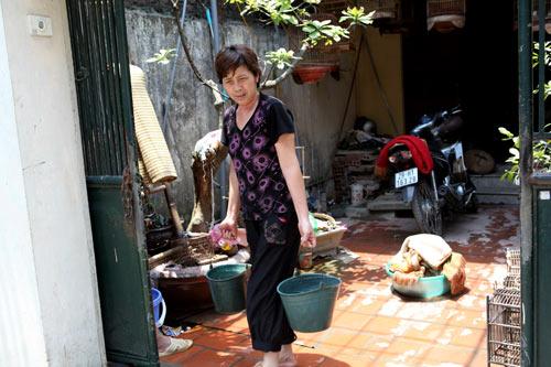Dân Thủ đô nhịn tắm, ăn cháo vì mất nước 14