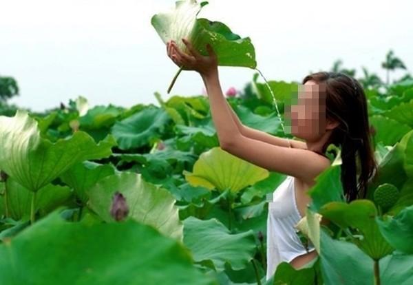 Nóng mắt những bức ảnh phản cảm của thiếu nữ bên hoa sen 8