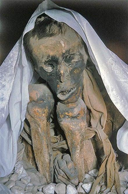 Bí ẩn xác chết Tây Tạng 600 năm không phân hủy - ảnh 1