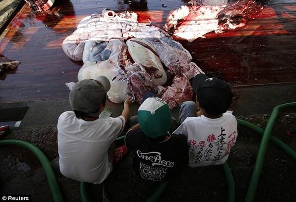 Kinh hãi với cảnh tượng xẻ thịt đẫm máu cá voi ở Nhật Bản 10