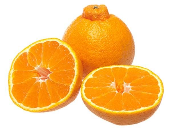 Hình ảnh Những loại trái cây đáng giá cả gia tài số 8