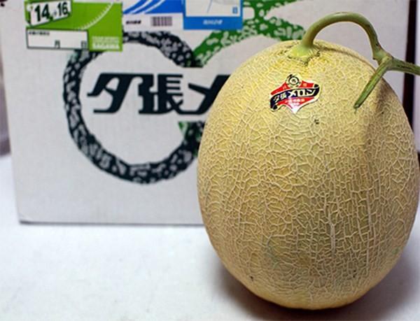Hình ảnh Những loại trái cây đáng giá cả gia tài số 4